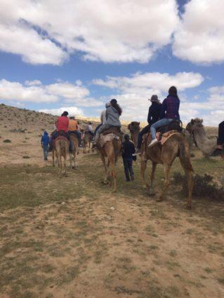 Kamel reiten