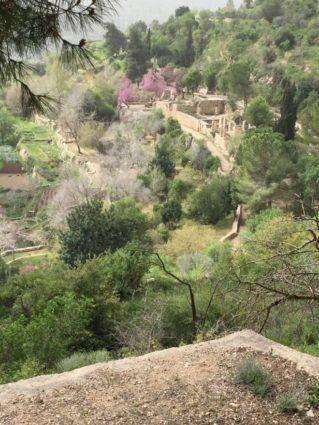 Terrassen der Bauern vor 300 Jahren